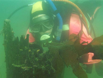 Diver surveying wharf pile